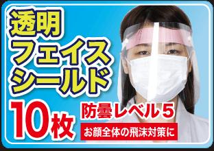 透明顔面マスク 10枚